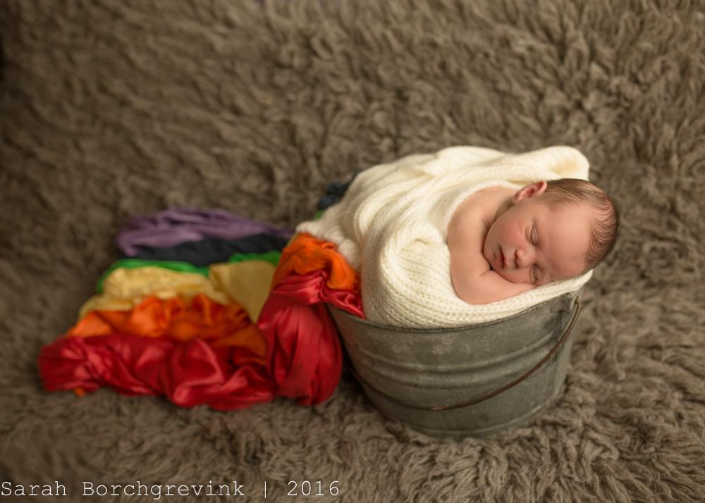 Sarah Borchgrevink Photography   Houston TX Newborn Photographer