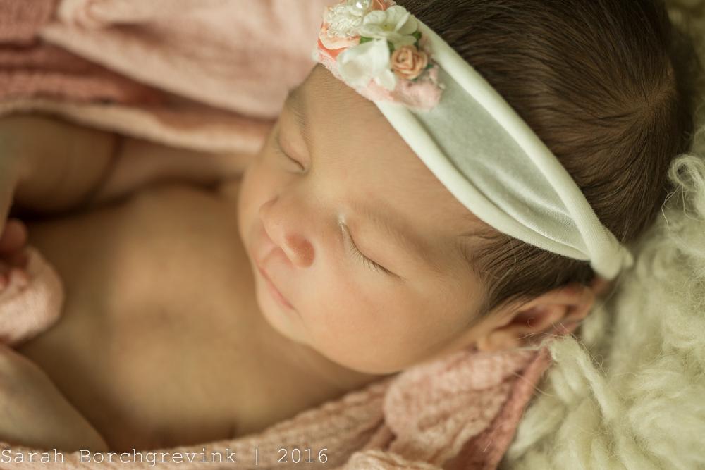 Houston TX Maternity Photographer