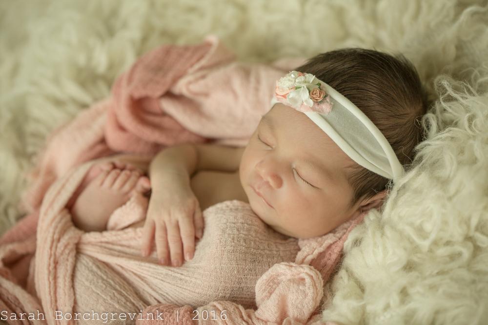 Newborn Photography Tomball