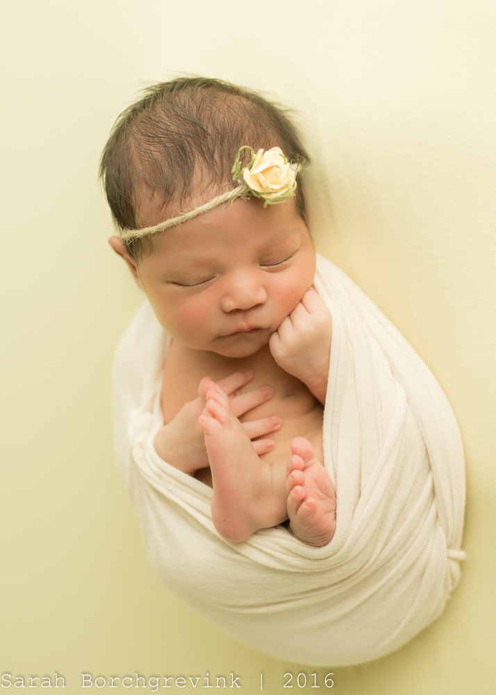 Sarah Borchgrevink Photography   Best Houston Newborn Photographer