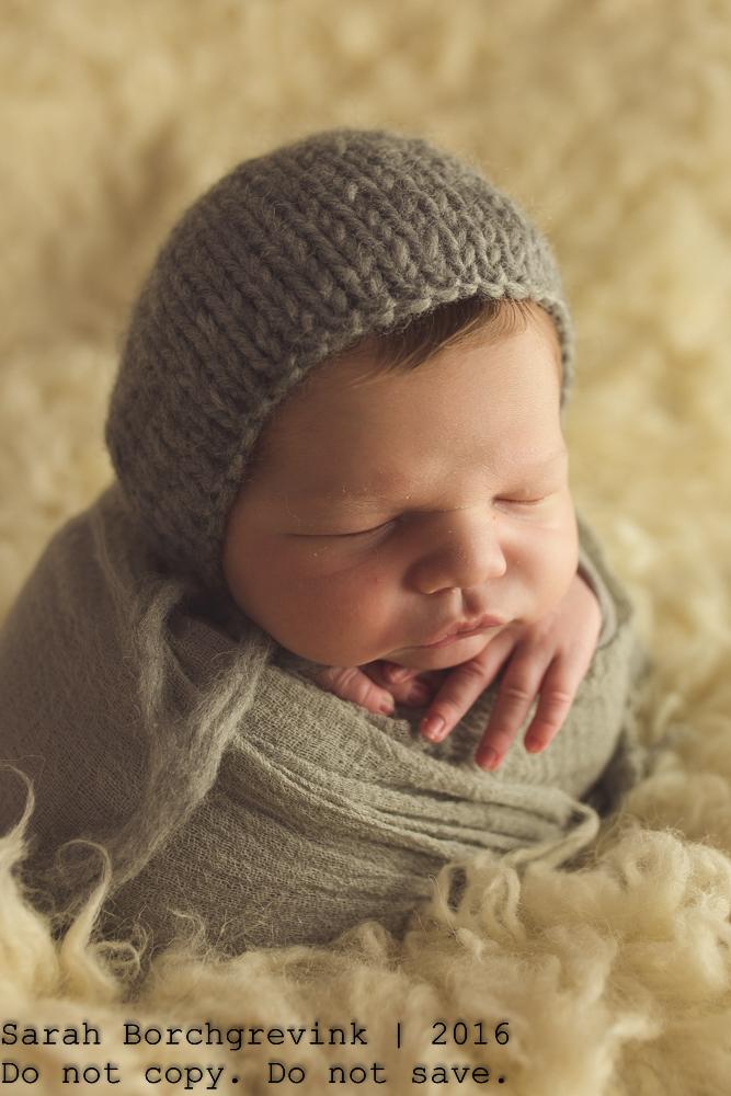 Newborn Photographer Houston TX
