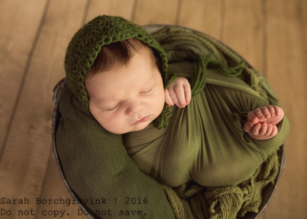Sarah Borchgrevink Photography