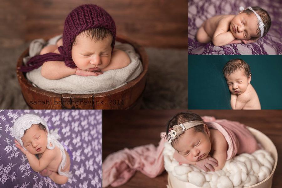 Cypress TX Newborn Portraits   Sarah Borchgrevink