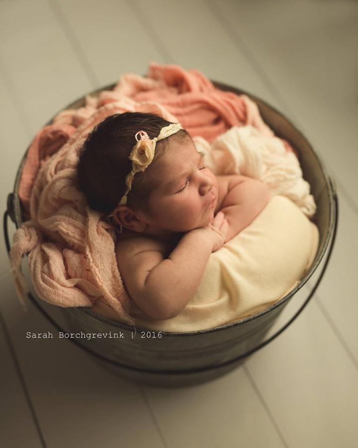 Northwest Houston Baby Photographer