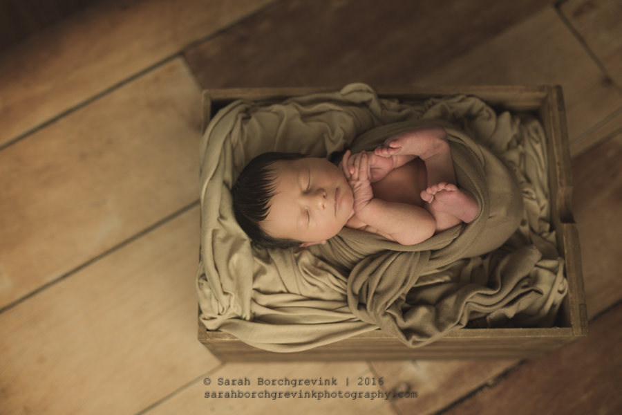Houston Newborn Photographer | Maternity & Newborn Portraits in Houston Texas