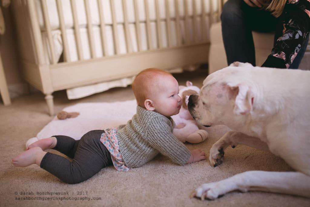 Cypress Newborn Photographer | Sarah Borchgrevink Photography