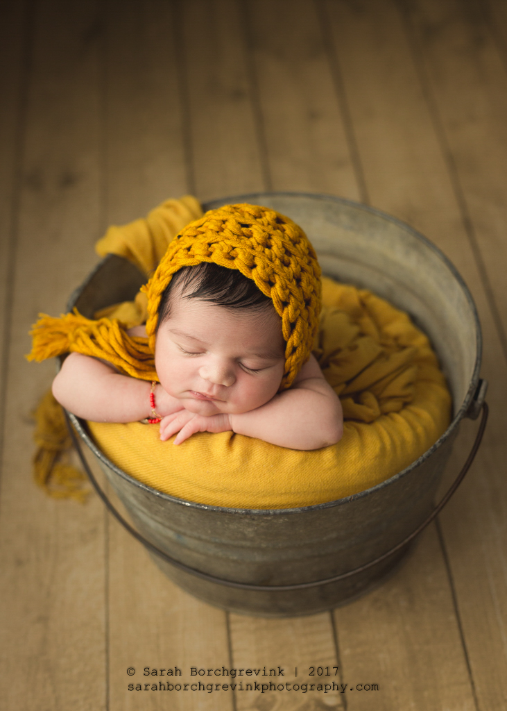 Newborn Portraits Spring TX | North Houston Photographer Sarah Borchgrevink