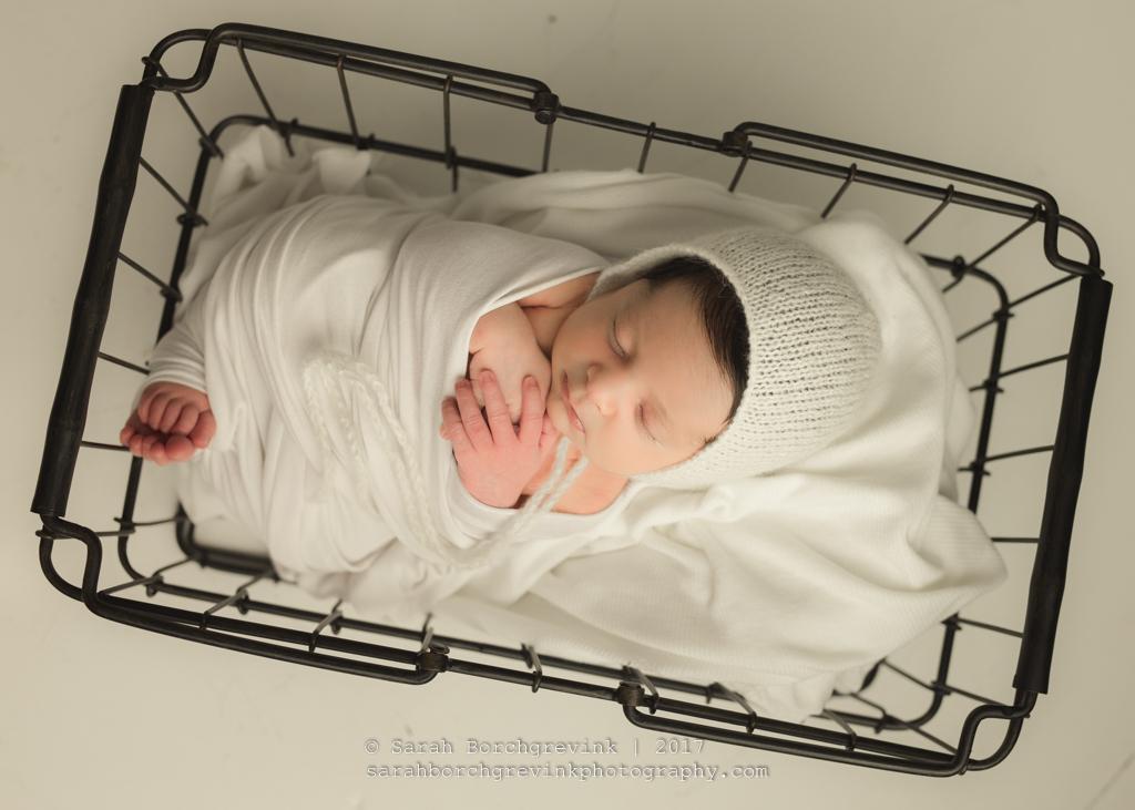 Houston TX Posed Newborn Photographer