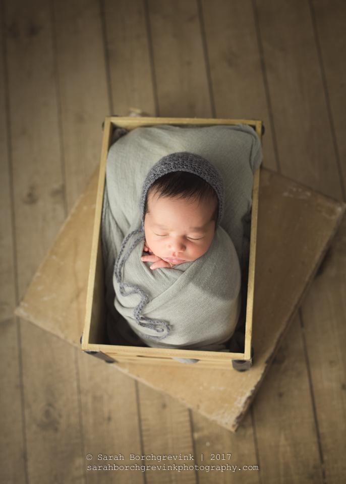 Houston Newborn Photographer | Newborn & Baby Portrait Photography