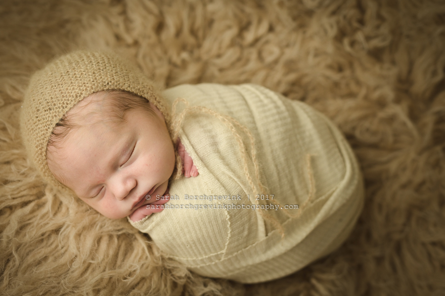 Sarah Borchgrevink Photography: Houston Newborn Photographer
