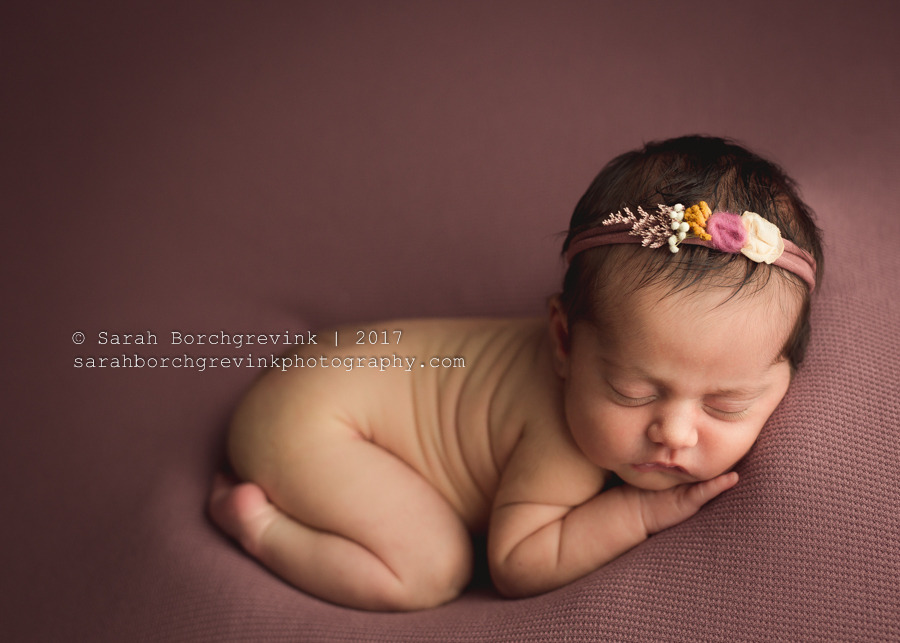 Newborn Photography Houston Texas