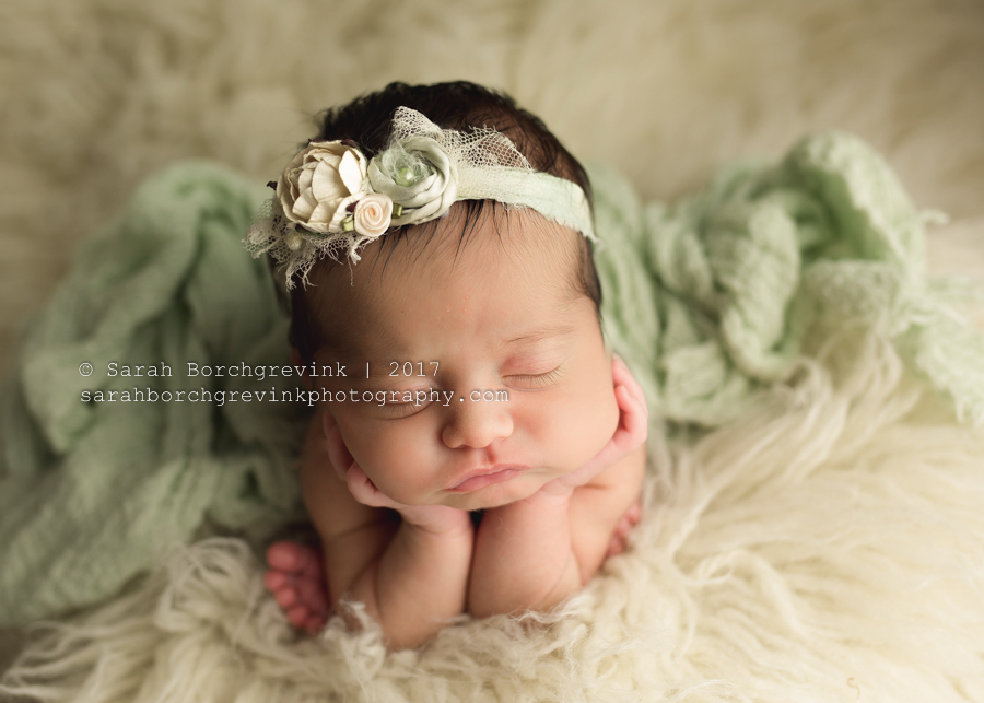 Houston TX Posed Newborn Photography by Sarah Borchgrevink