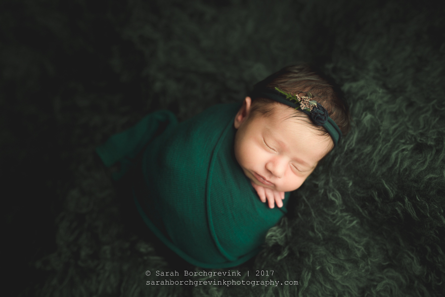 Newborn Photographers Houston.JPG
