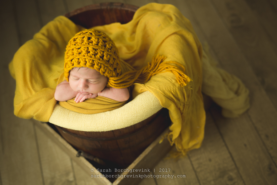 Houston Texas Baby & Newborn Photographer