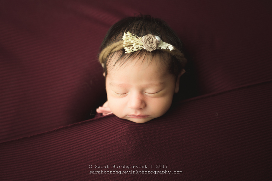 Newborn Photographer Houston TX | Sarah Borchgrevink