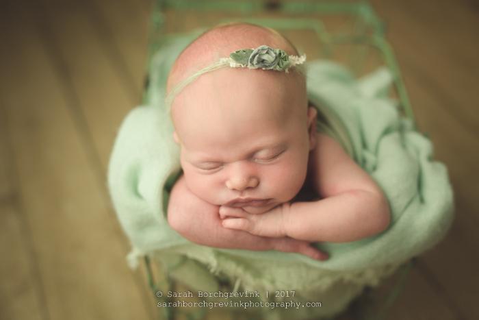 Sarah Borchgrevink Photography.JPG