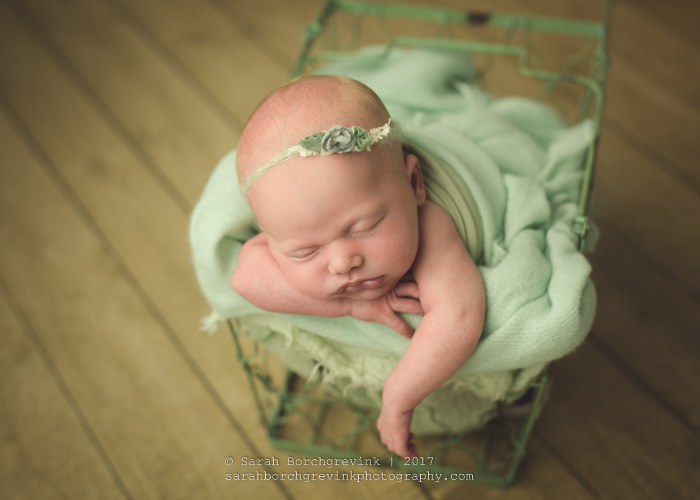 Sarah Borchgrevink: Bellaire TX Newborn Photographer