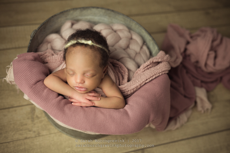 Sarah Borchgrevink: Baby Portraits Houston TX