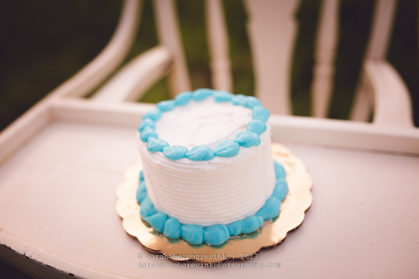 Houston Cake Smash Photographer | Sarah Borchgrevink