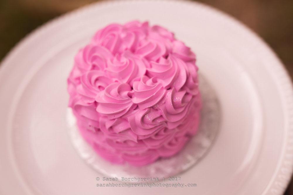Cake Smash Photography Houston