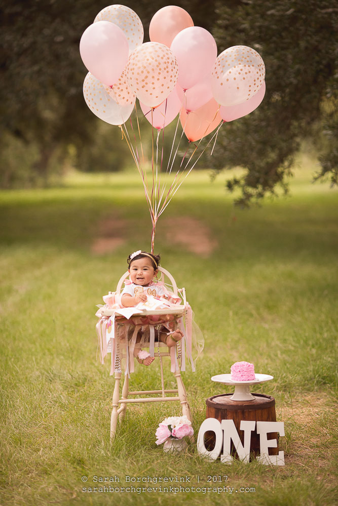Houston Cake Smash & Baby Photography