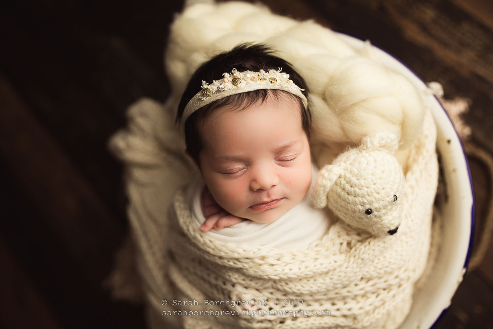 Newborn Photographer Houston TX