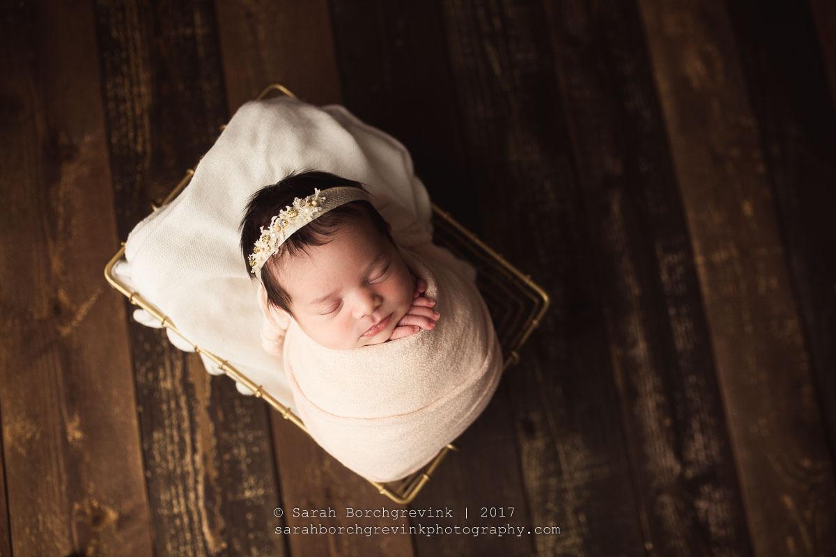 Newborn Photographer Katy TX