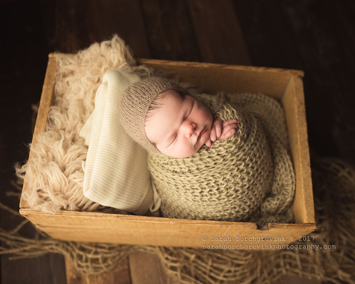 5 Must Have Newborn Studio Props You Can Find On Amazon Prime
