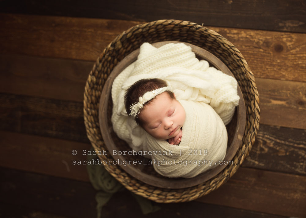 houston newborn photographers