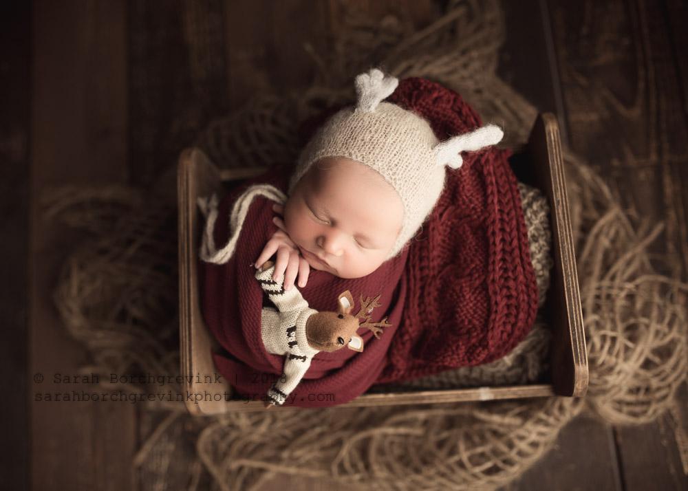baby portraits houston