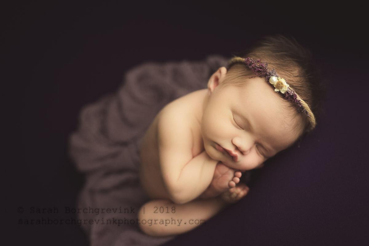 newborn posing on dark purple backdrop