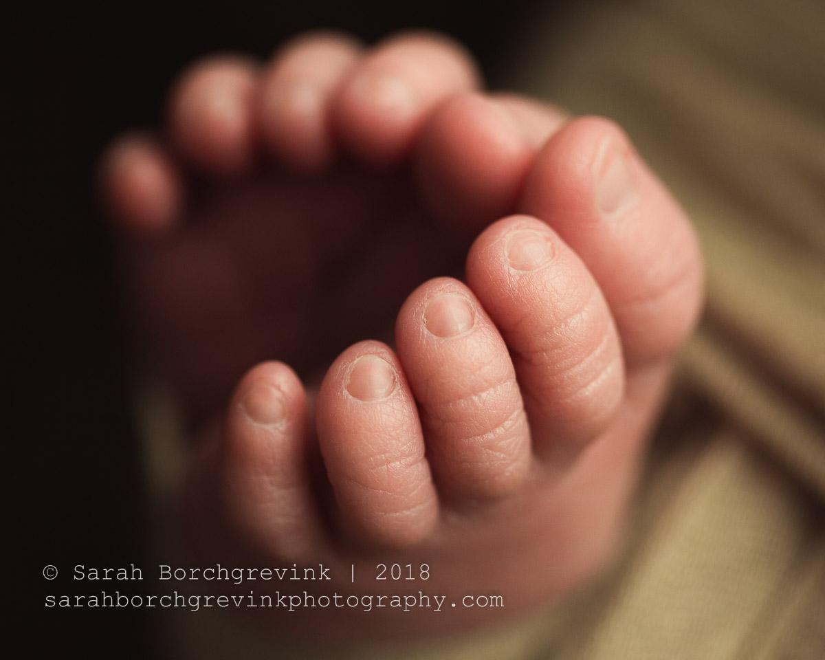 newborn photography macro photos