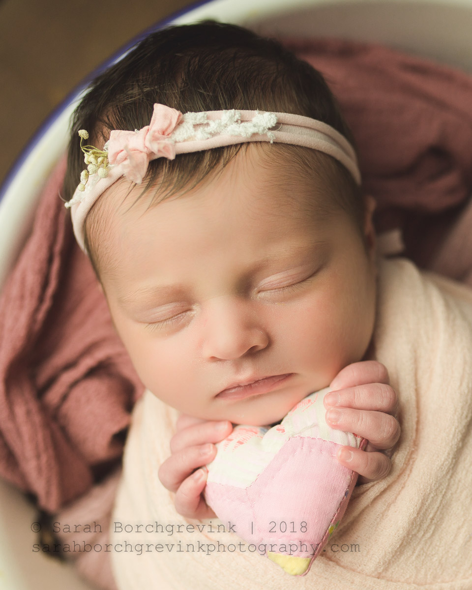 spring inspired newborn photography