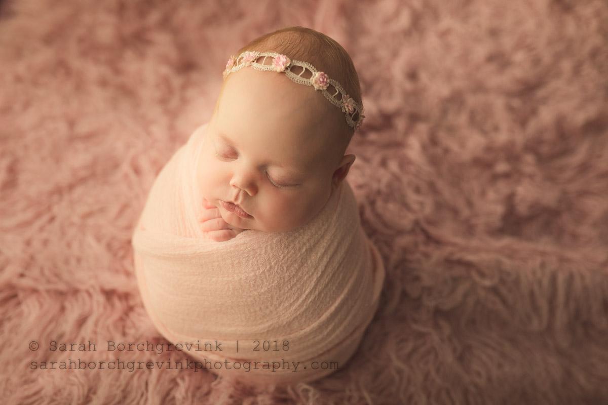 newborn posing for older babies