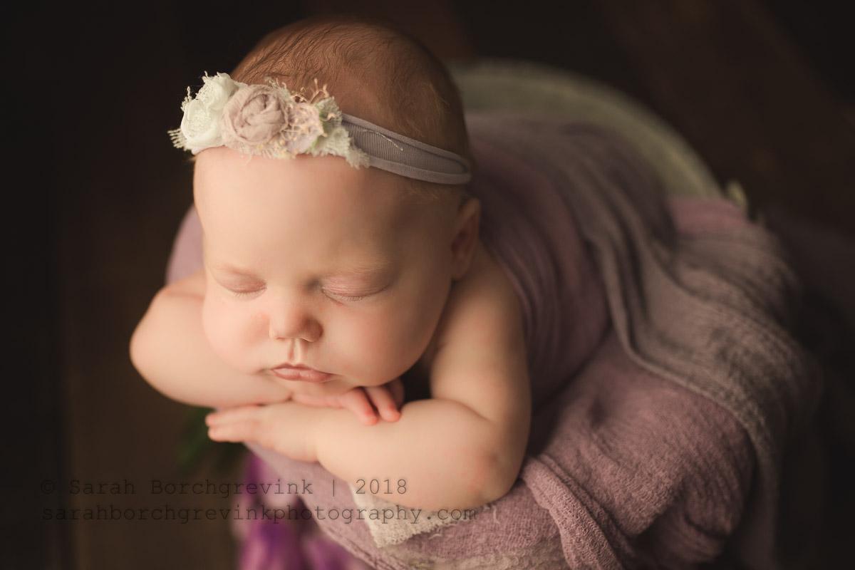 posed newborn portraits houston tx