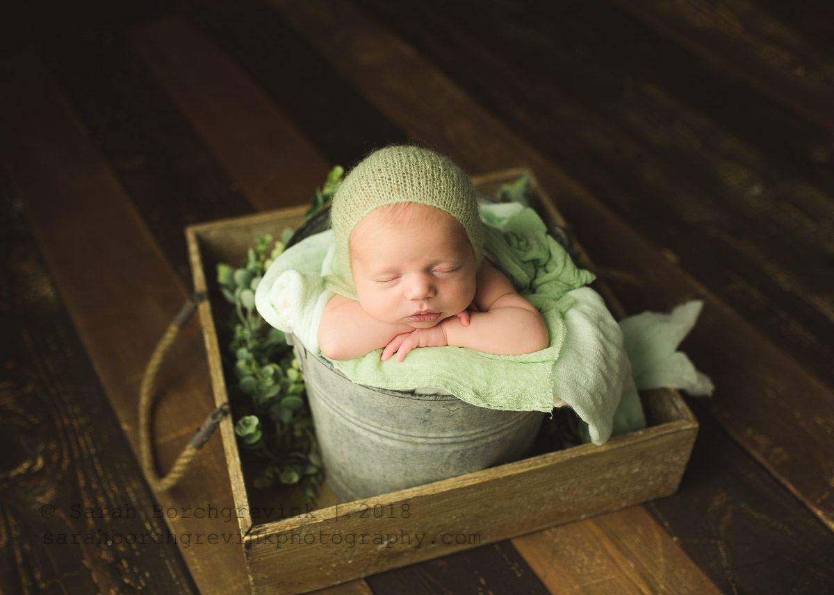 affordable baby photography by sarah borchgrevink