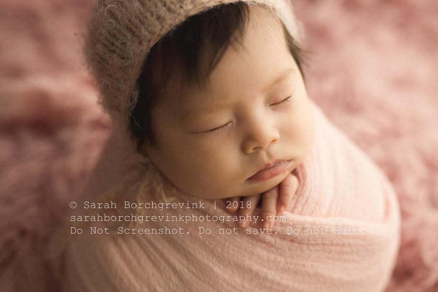 newborn photography spring tx