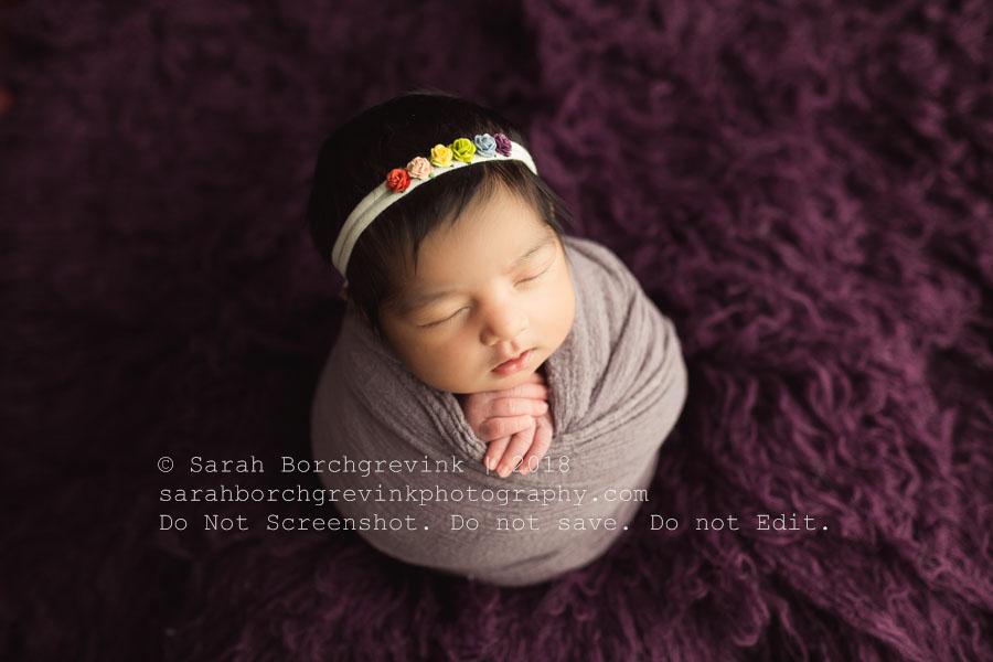 purple and lilac newborn girl photography