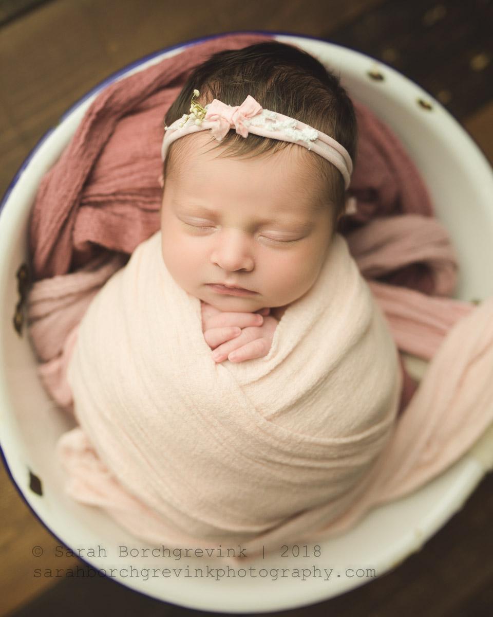 sarah borchgrevink: houston newborn photographer