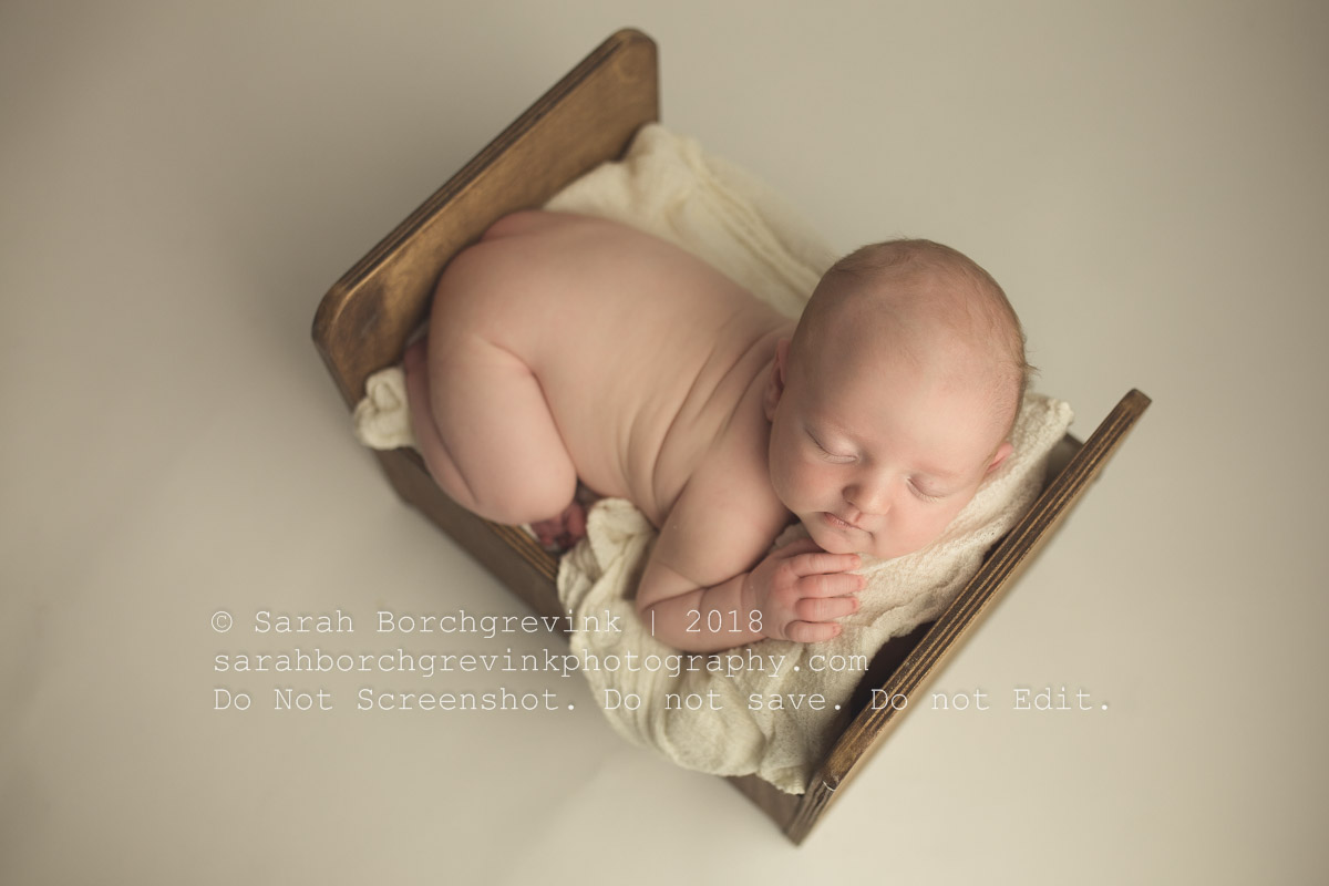 adorable bed prop for newborn session