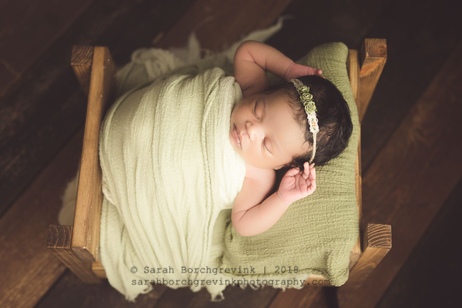 mini newborn session houston tx