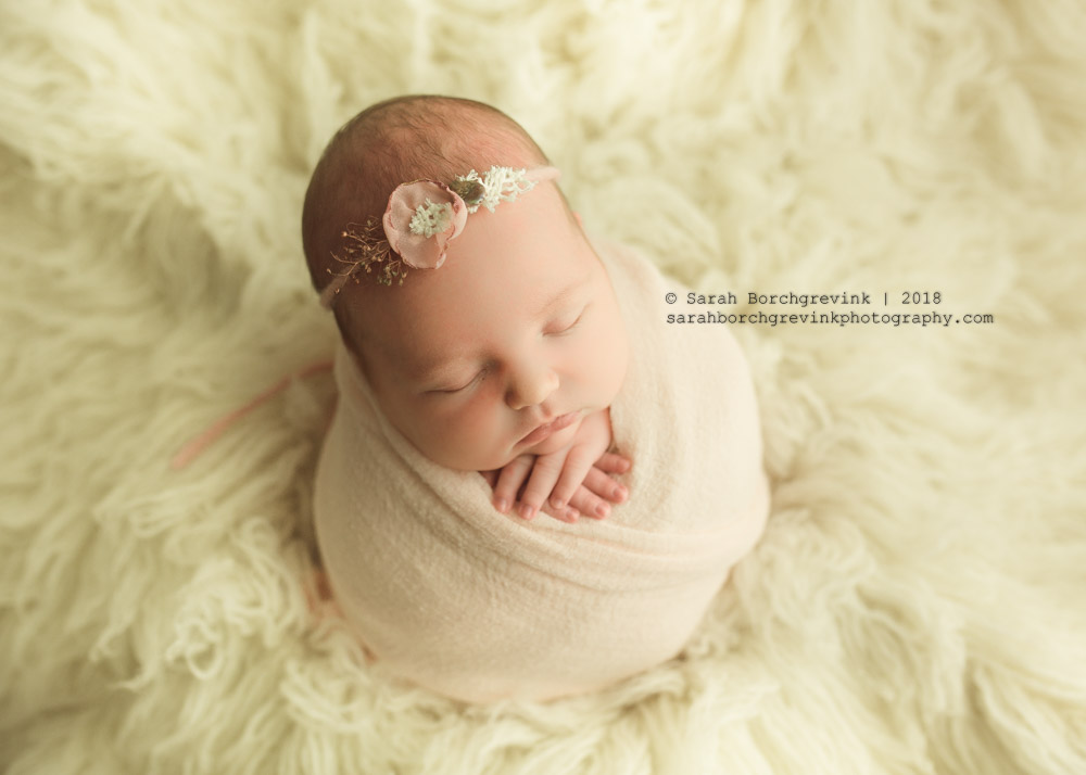 girly and chic baby portraits