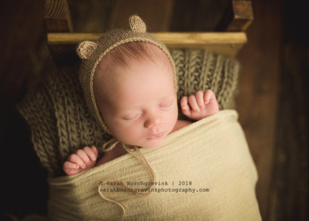 newborn photography bear bonnet