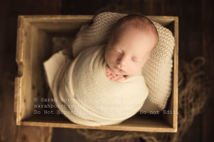 newborn photography sugar land