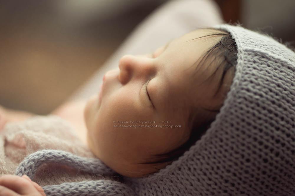 newborn macro features by sarah borchgrevink