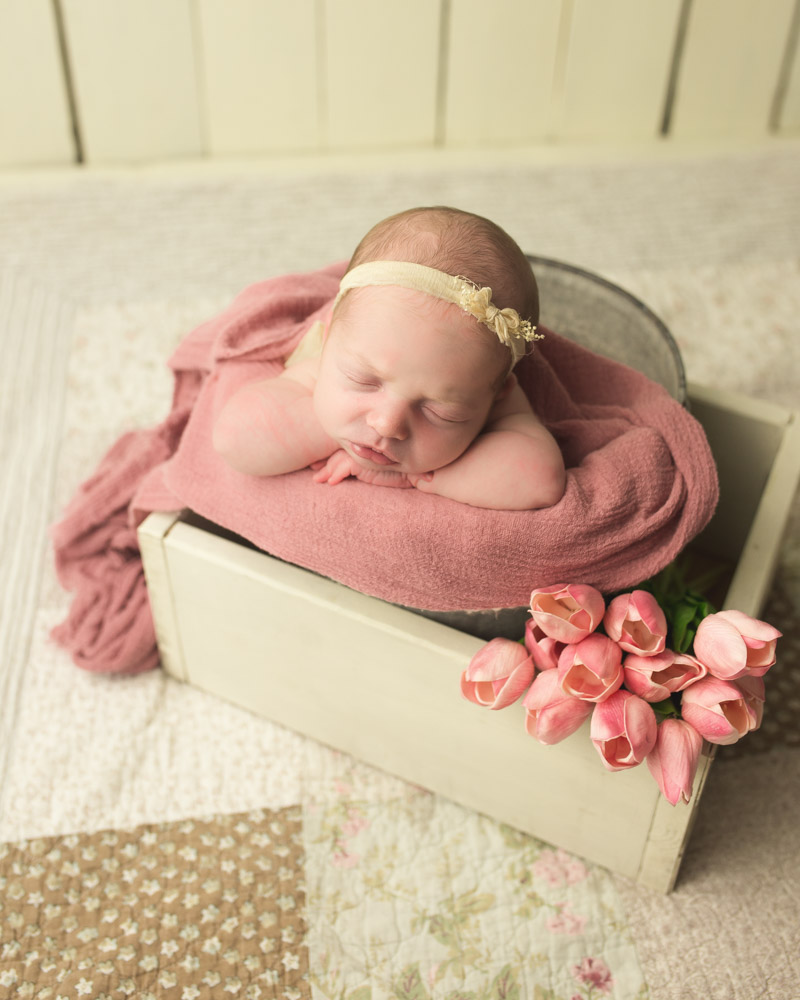 springtime inspired newborn baby photos