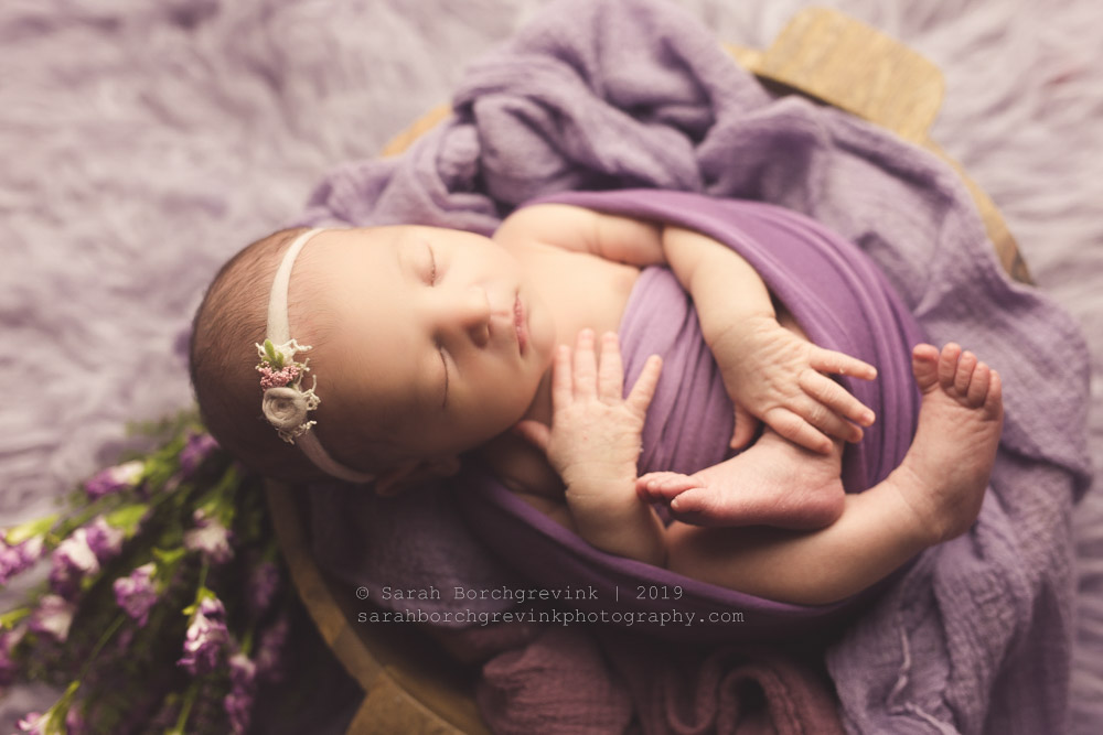 choosing colors and flowers for newborn session