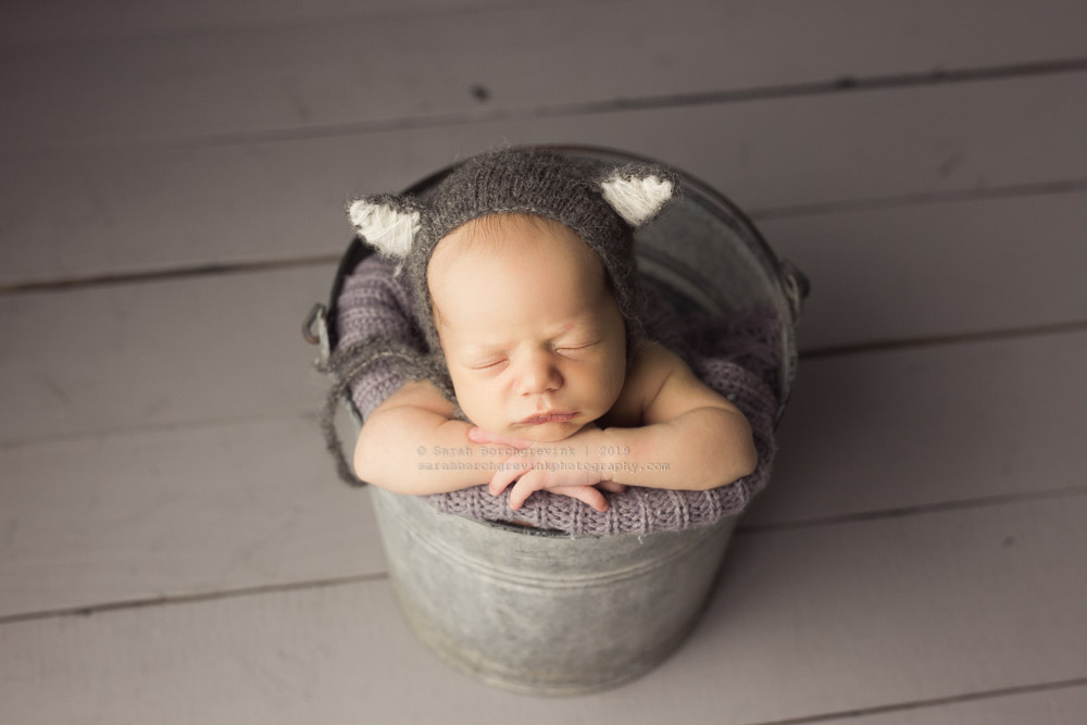 gray animal hat for newborn photos
