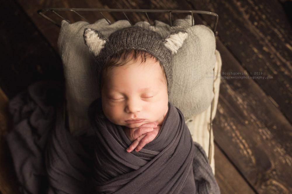 baby wolf hat
