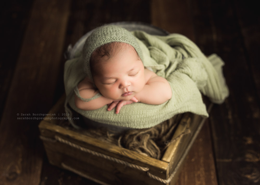 Rustic newborn photography sage green